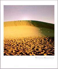 Desert's soul