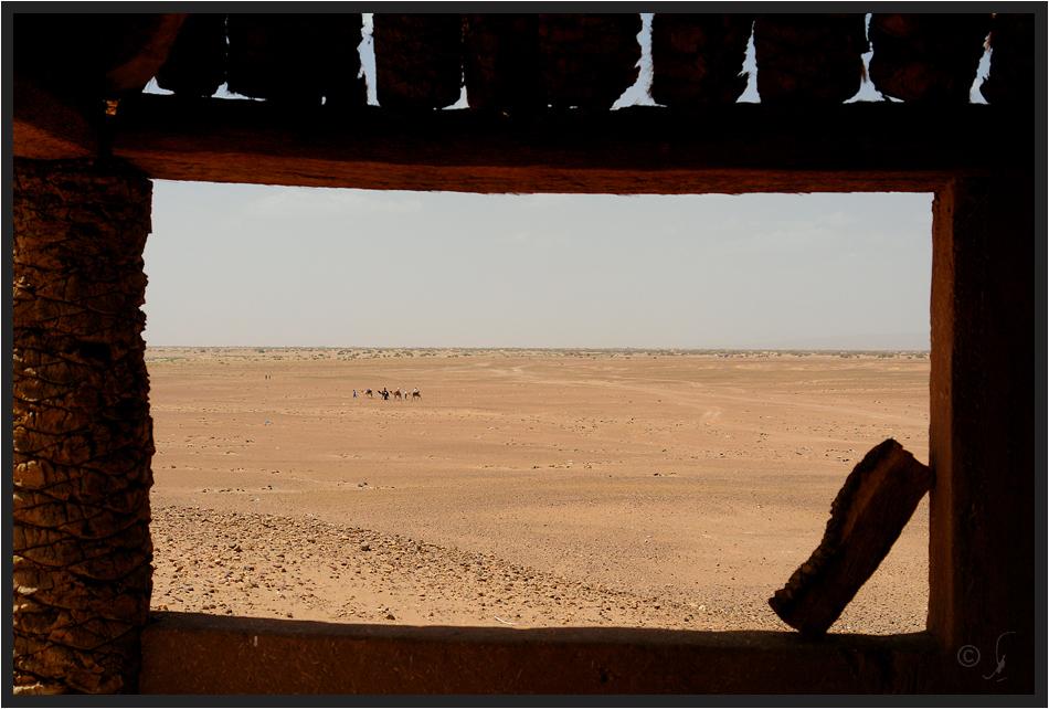 desertview..