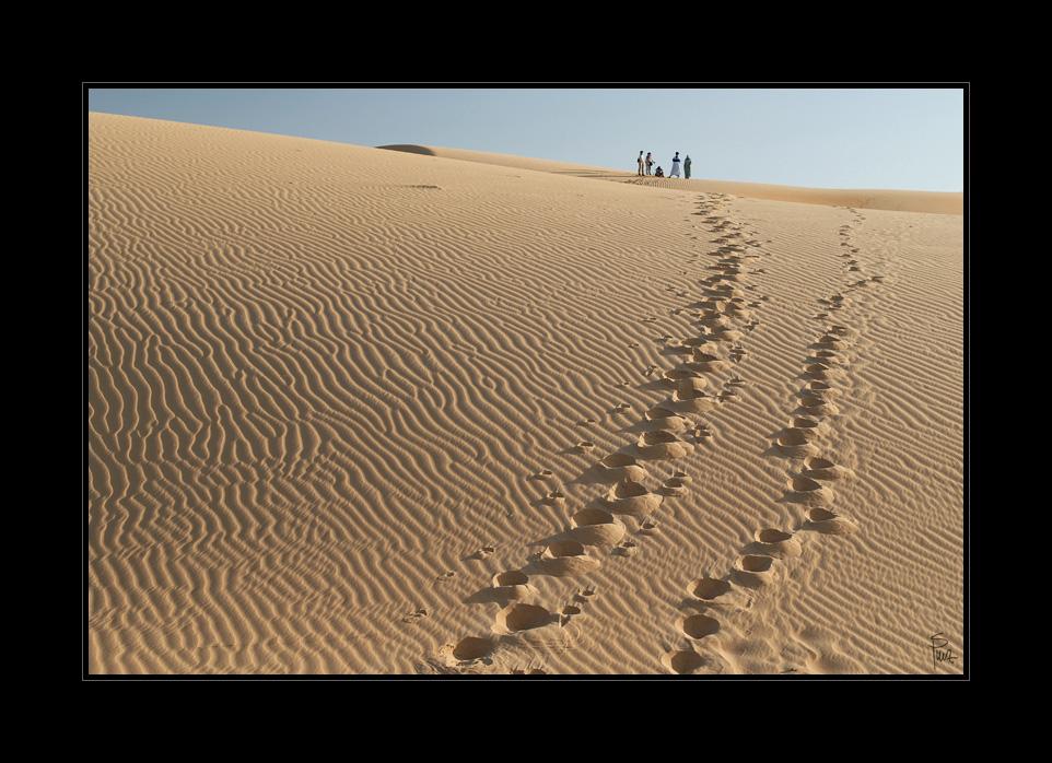___desert_X___