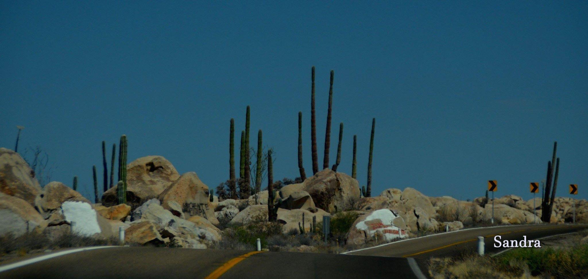 Desiero de Baja California Mexico
