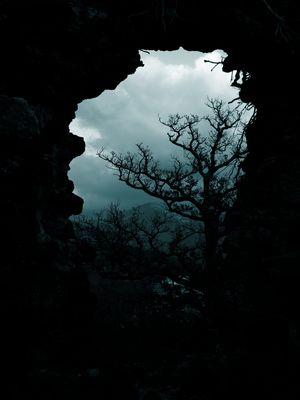 Désolation au tombeau