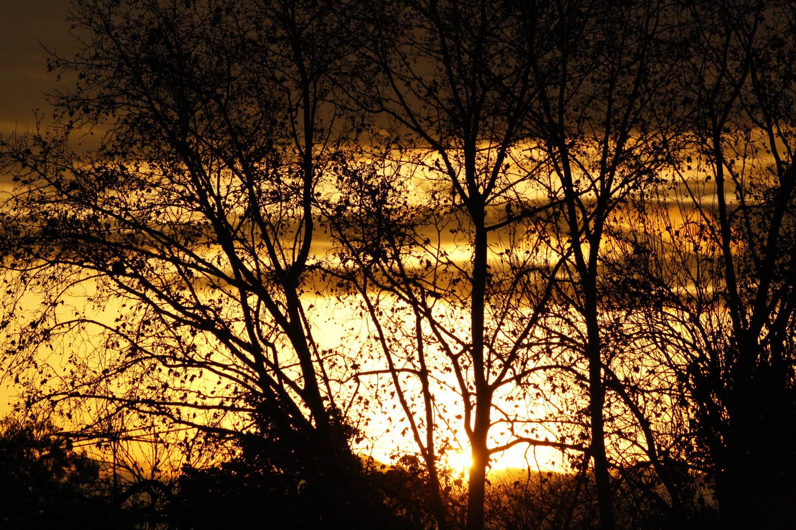 Después de todas las tormentas sale el sol