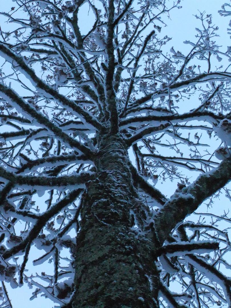 Dessin de neige