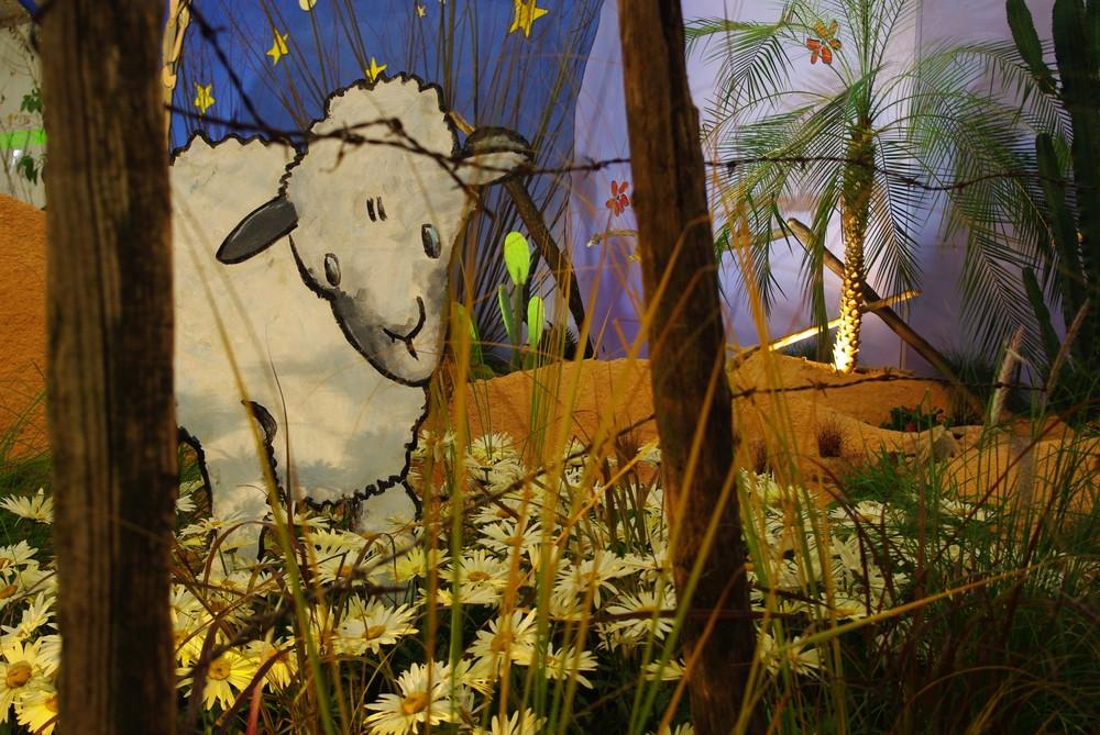 dessine moi un mouton!!!!!!!