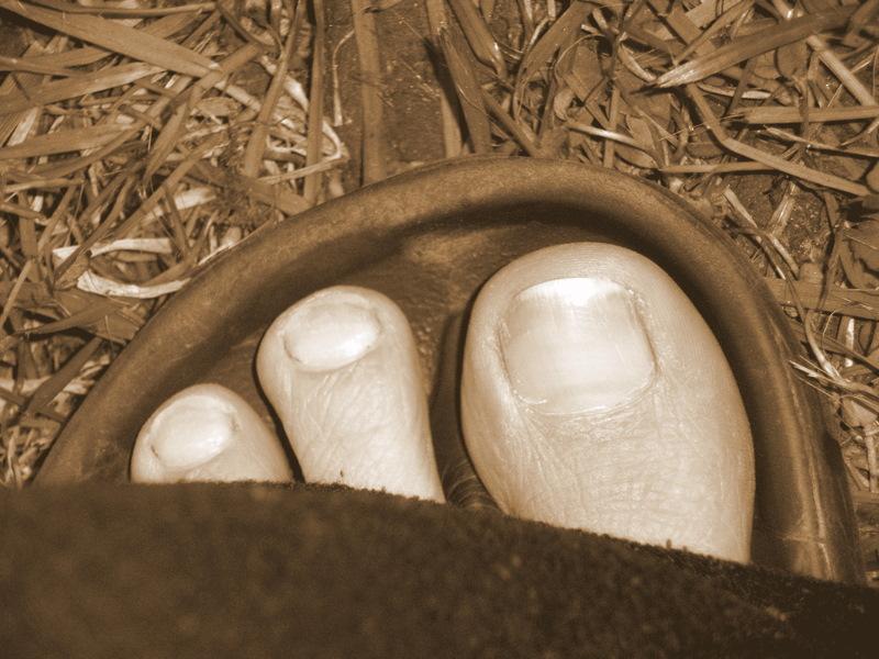 Detail: Fuß
