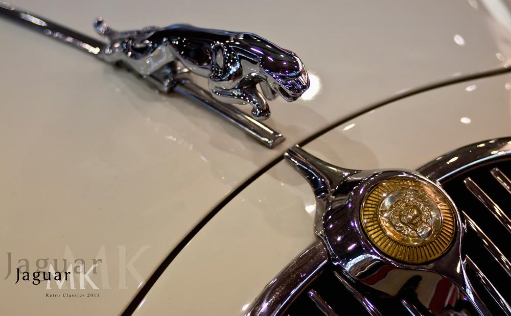 Detail Jaguar - Nr: 1001