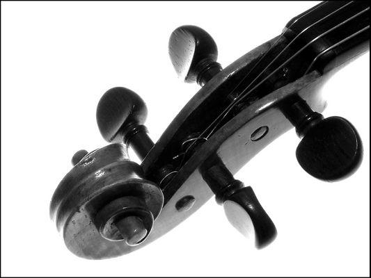 Details einer Geige #1