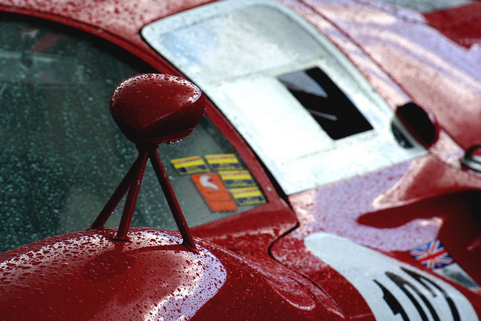 Details im Regen
