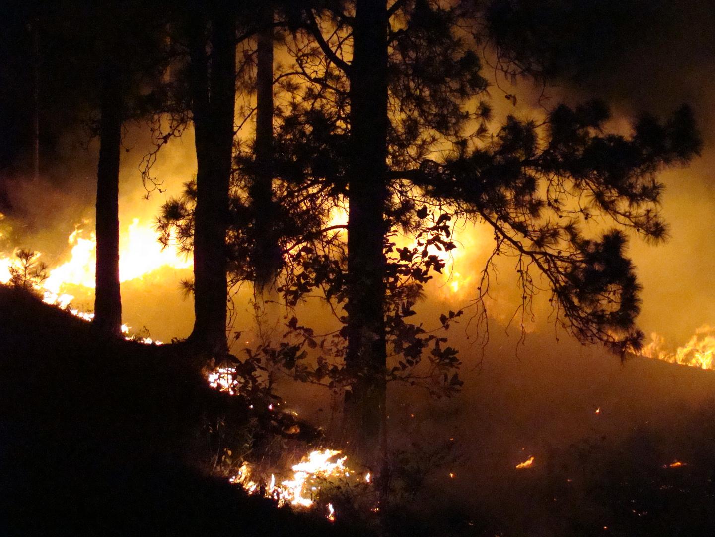 Detalle de fuego a media noche