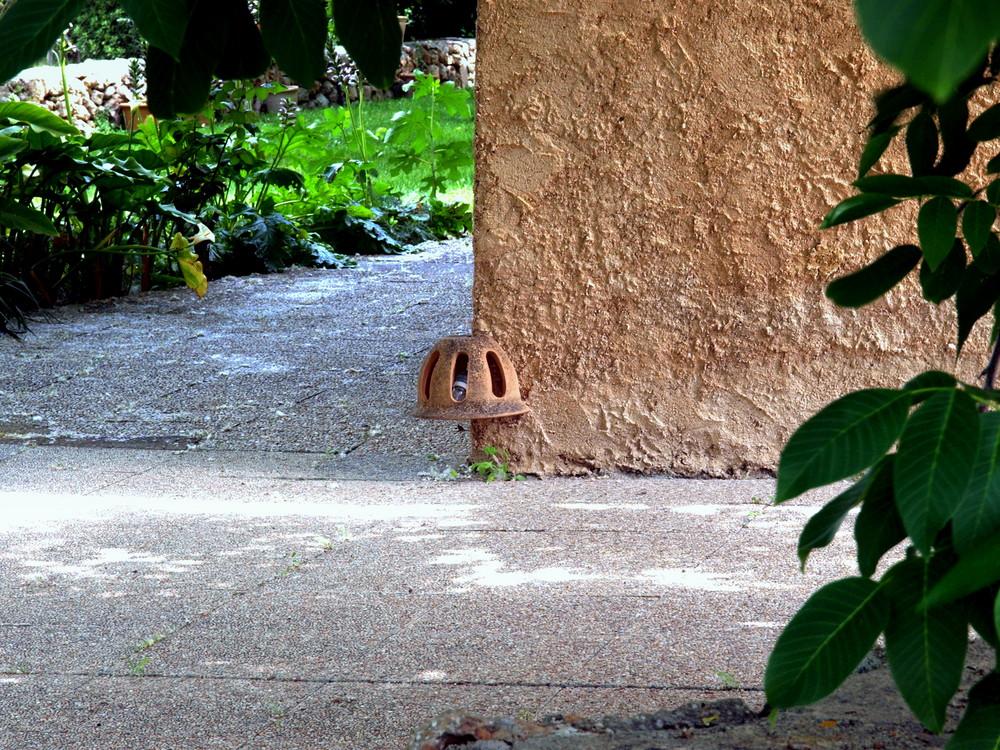 Detalle en el jardín