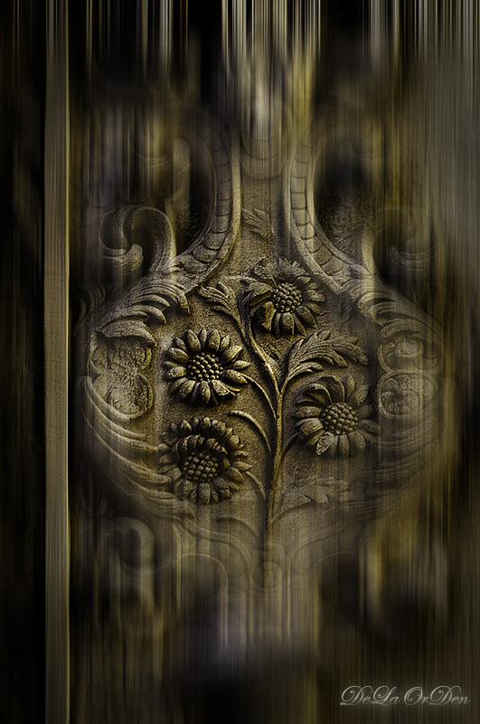 Detalles y Texturas