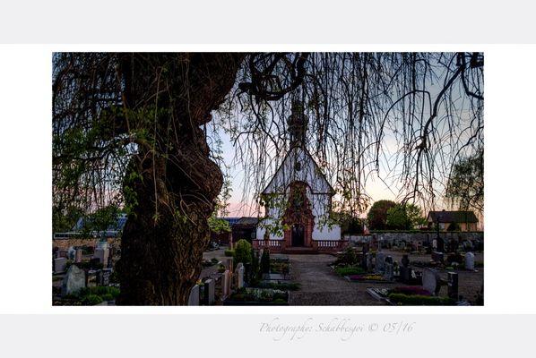 Deutsche Friedhofskultur ( 41 )