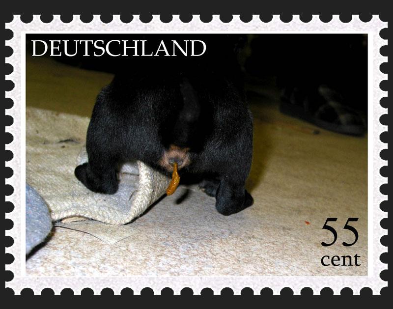 Deutschland Marke
