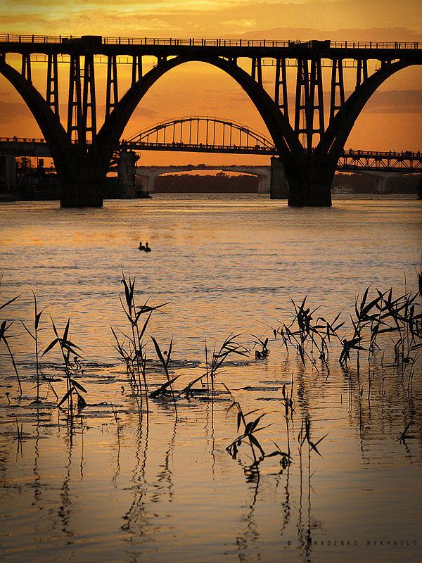Deux canards et trois ponts
