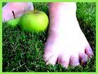 Deux pieds avec deux pommes dans le jardin de la grand-mère