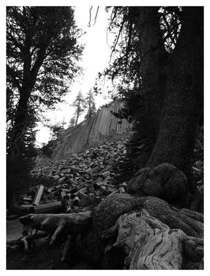 devils postpile awesome natural architecture