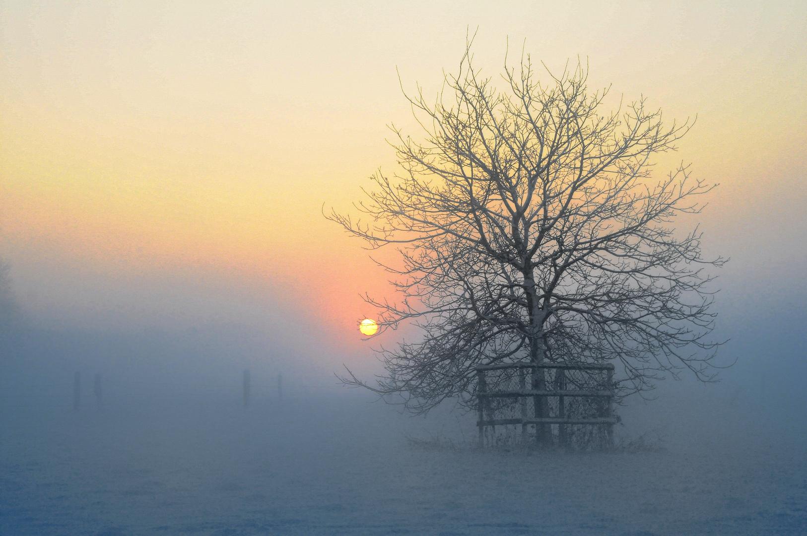 Dezember-Nachmittag