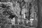 DFG Ehrenfriedhof