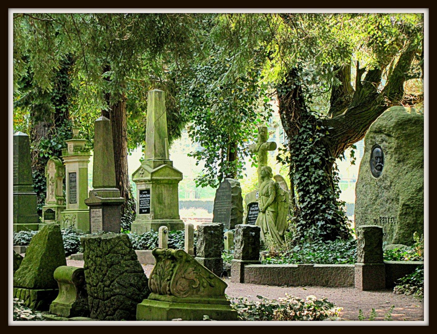 DFG Saarbrücken alter Friedhof