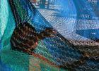 Dhayan dans les mailles du hamac
