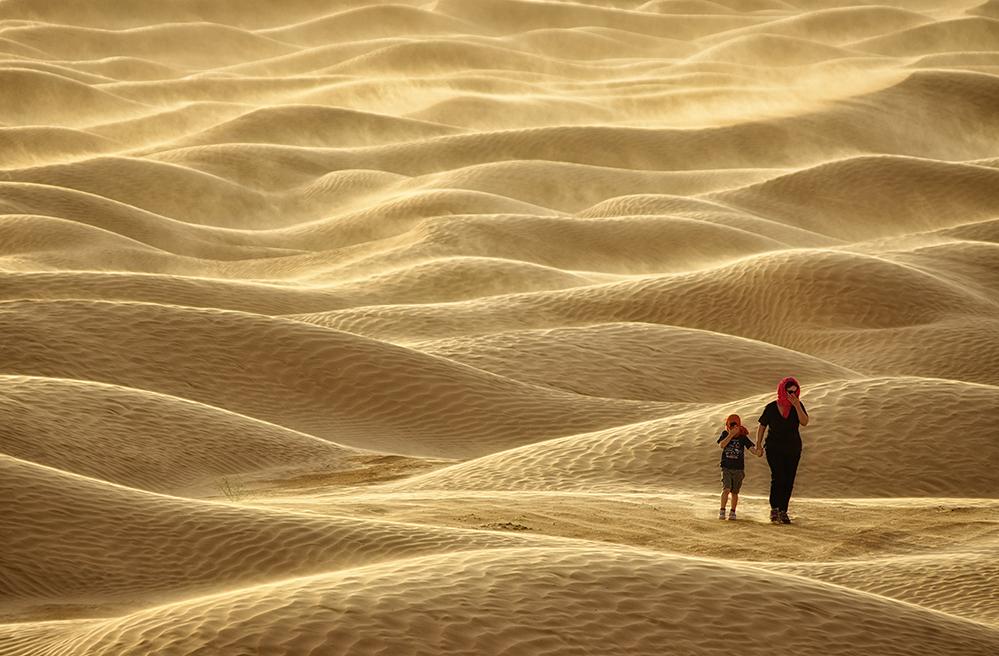 ...Di Umani e di Dune...
