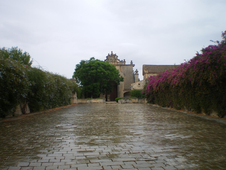 Día lluvioso (Cartuja de Jerez)