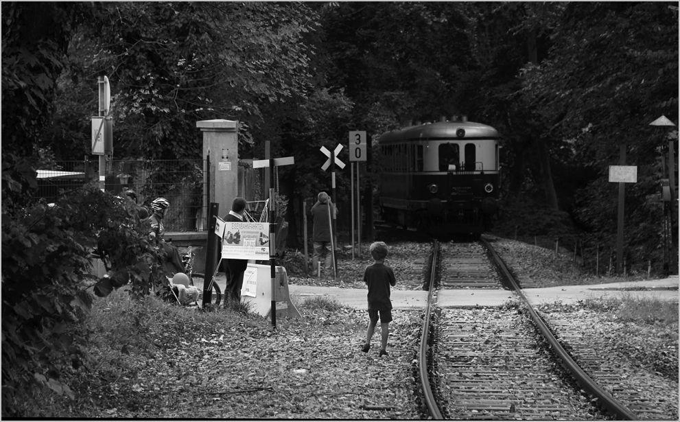 Diagnose Eisenbahnvirus