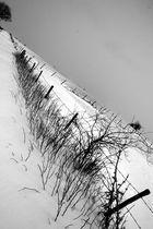 Diagonale hivernale
