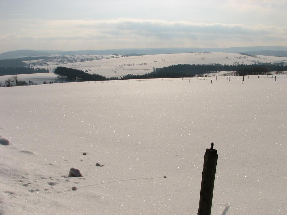 Diamanten im Schneefeld in Thüringen