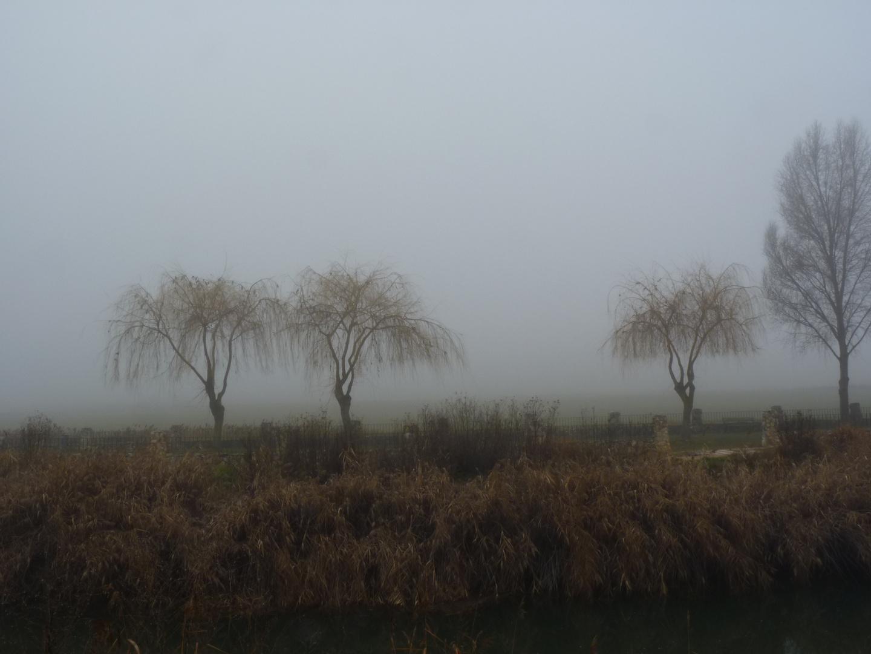 Dias de niebla 1