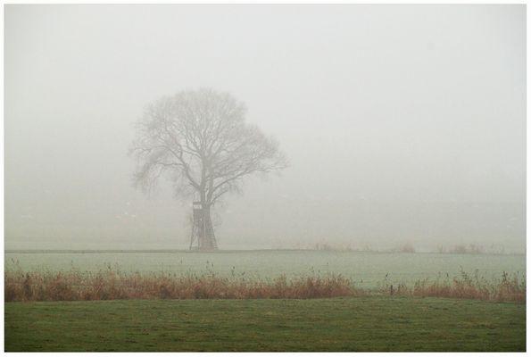 Dichter Nebel