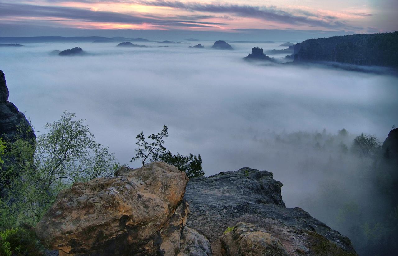 Dicke Nebelsuppe im Zschand