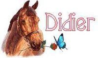 didier87
