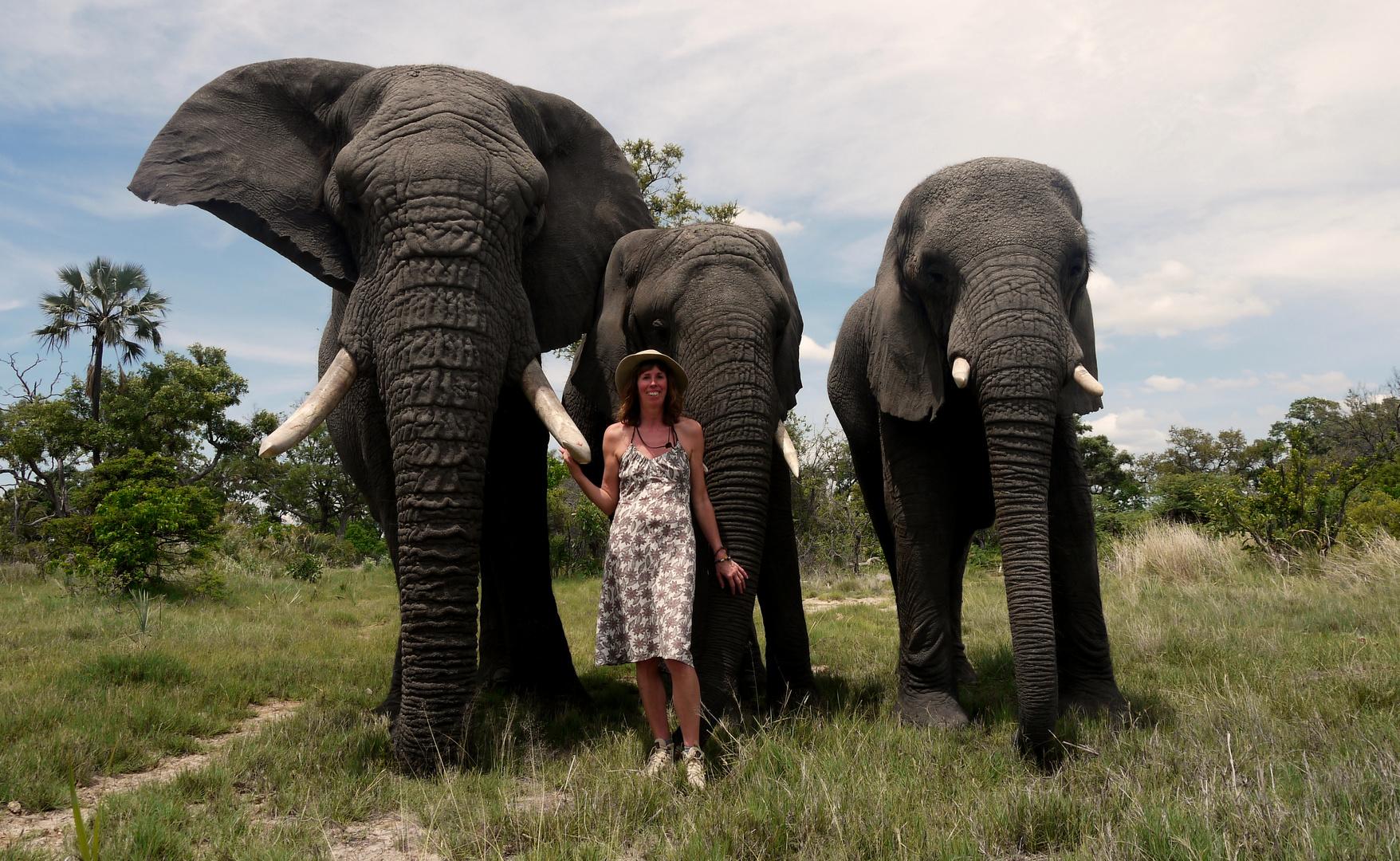 Die 3 Elefanten Jabu, Tembi und Marula mit mir