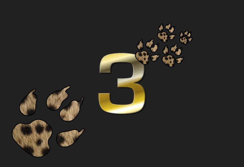 Die 3 schönsten Raubkatzenbilder...
