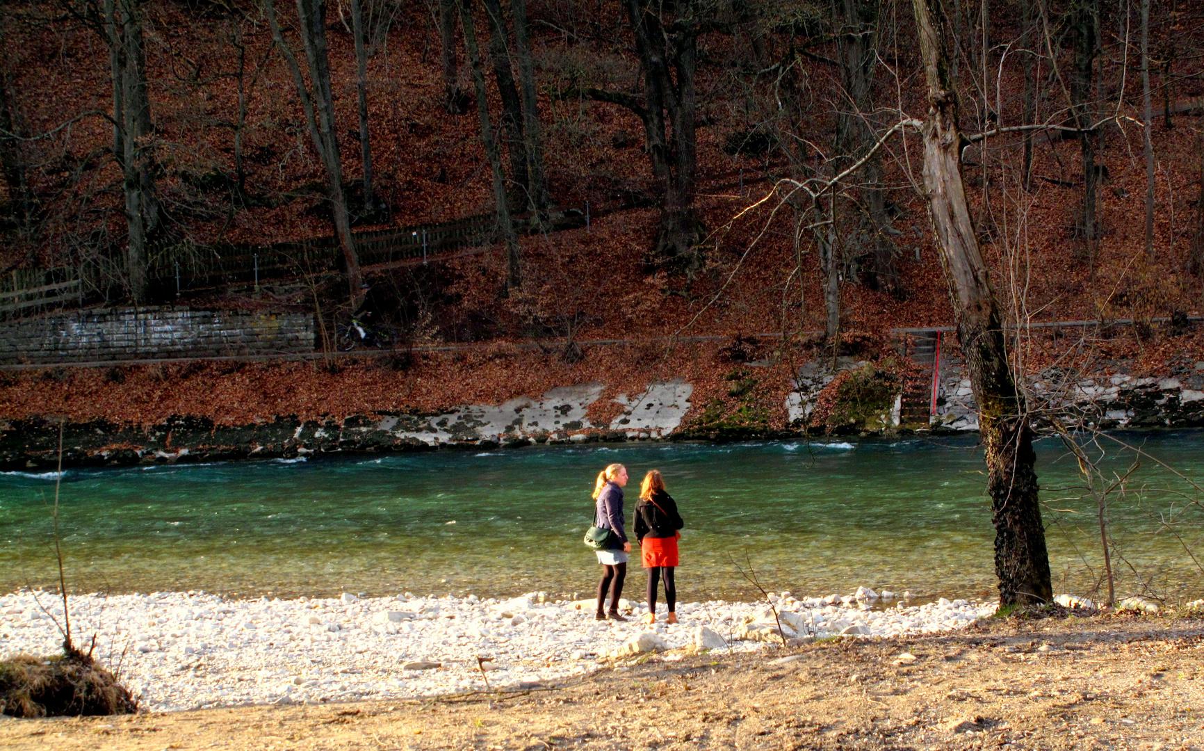 Die Aare im Eichholz bei Bern
