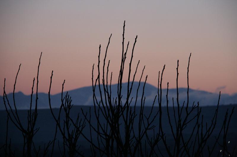 Die Abendsonne