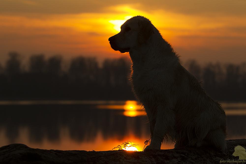 Die Abendsonne genießen