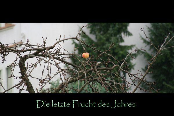Die allerletzte Frucht