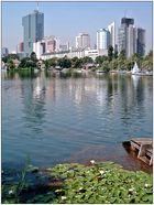 die alte Donau - ein Freizeitparadies
