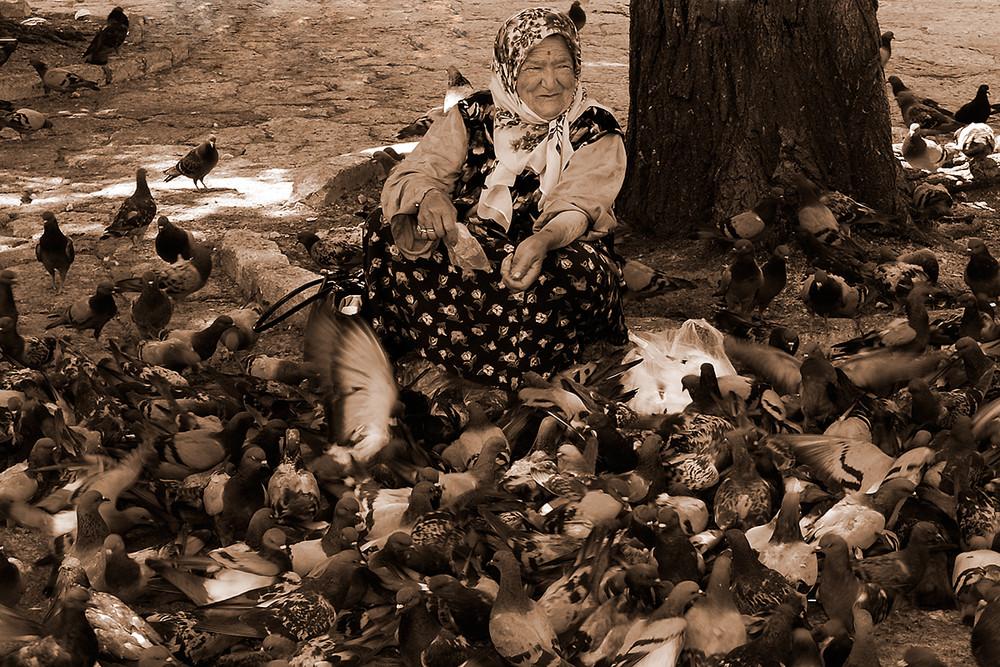 Die alte Frau und ihre Tauben....