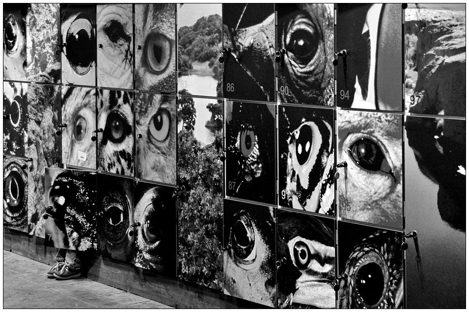 Die alternative Galerie # 78 CLOSED