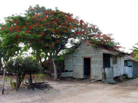 Die andere Seite der Domenikanischen Republik