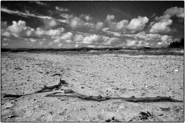 die Angst des Strandkorbes vor der Einsamkeit...