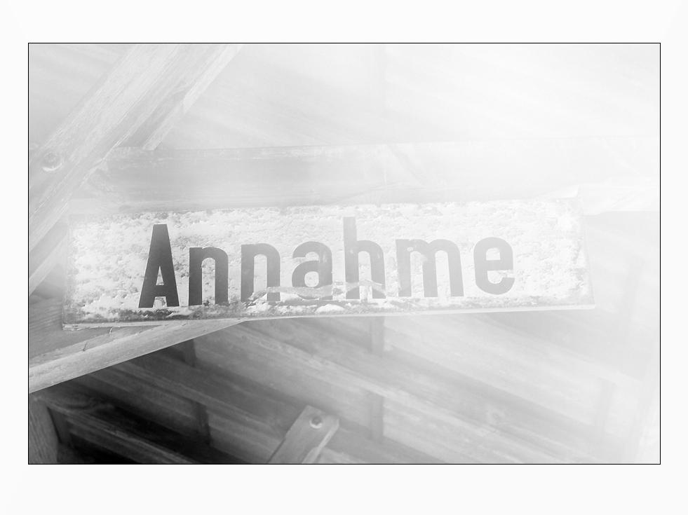 die ANNAHME.....