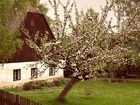 Die Apfelbaumschaukel