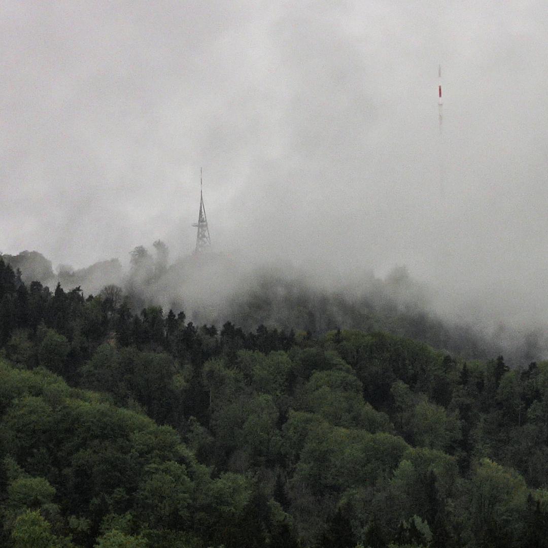 Die Aussicht im Nebel