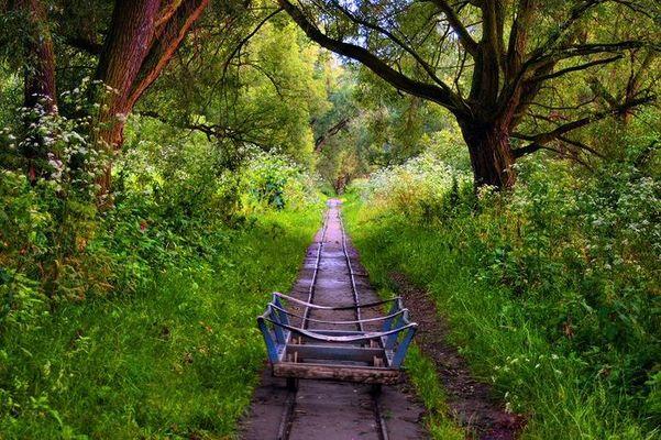 Die Bahn in den Sommer