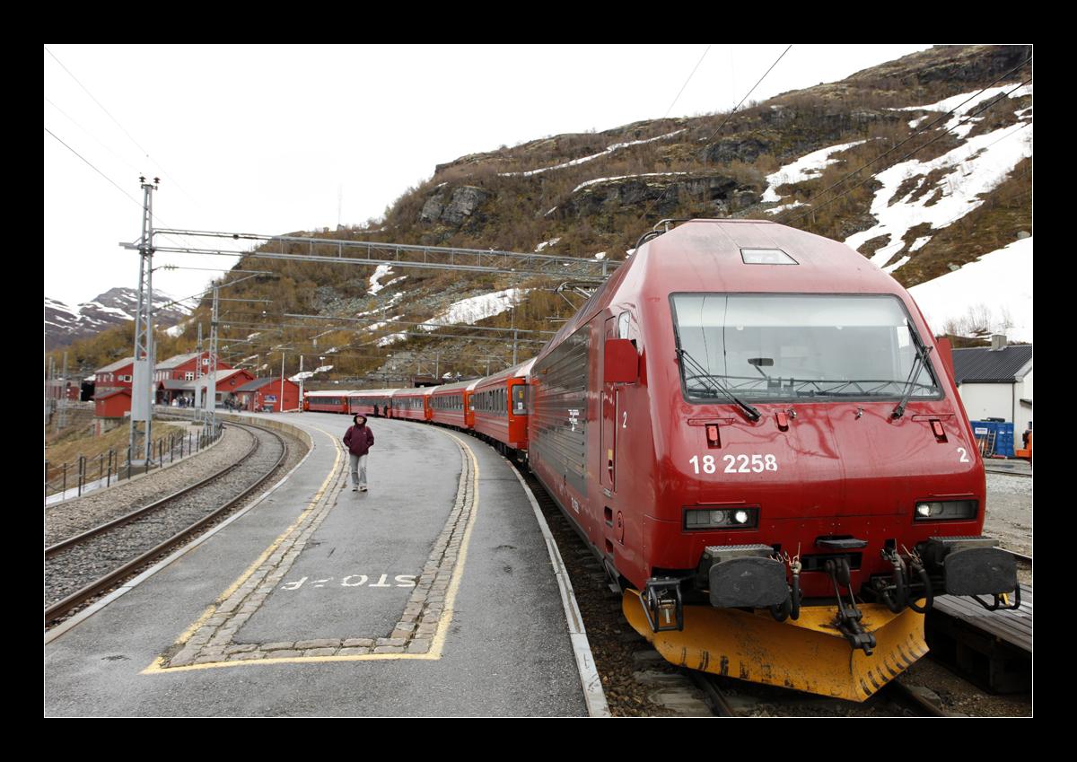 Die Bergenbahn