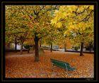 Die Blätter fallen..